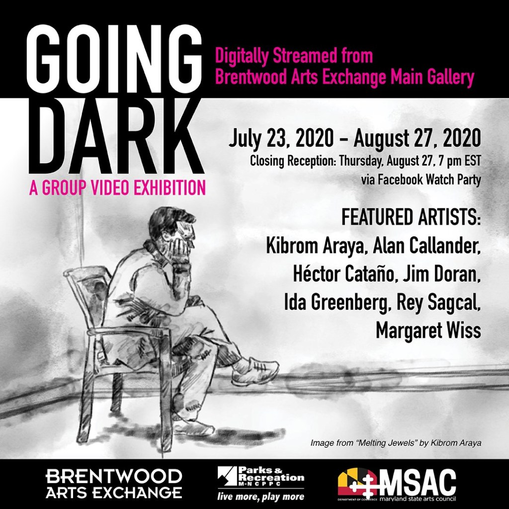 Going Dark. 7 Artist video installation running July 23rd to August 27th, 2020 at Brentwood Arts Exchange on online.